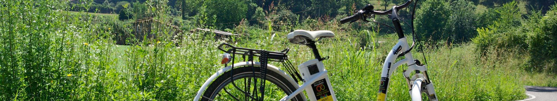 lloguer-bicicletes-electriques