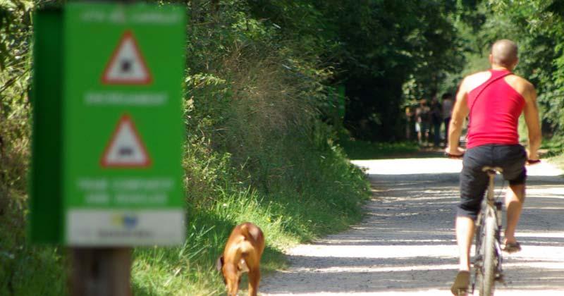 rutes-en-bicicleta_4
