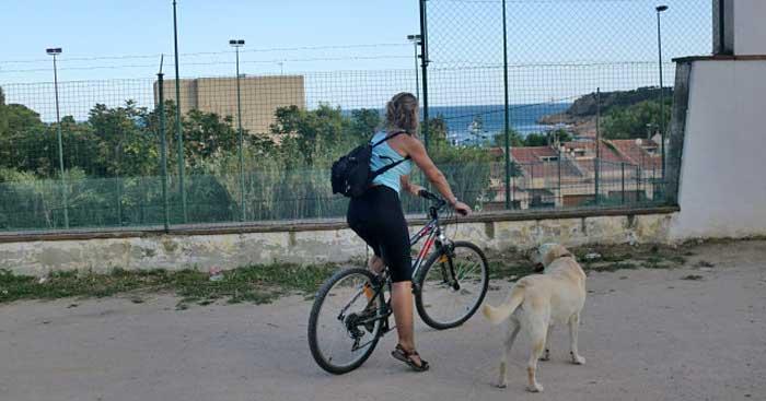 rutes-vies-verdes-carrilet-girona-sant-feliu-guixols_5