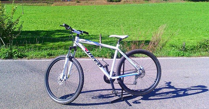 bicicleta-btt-weed-cross-country_1