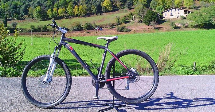 bicicleta-btt-weed-cross-country_2