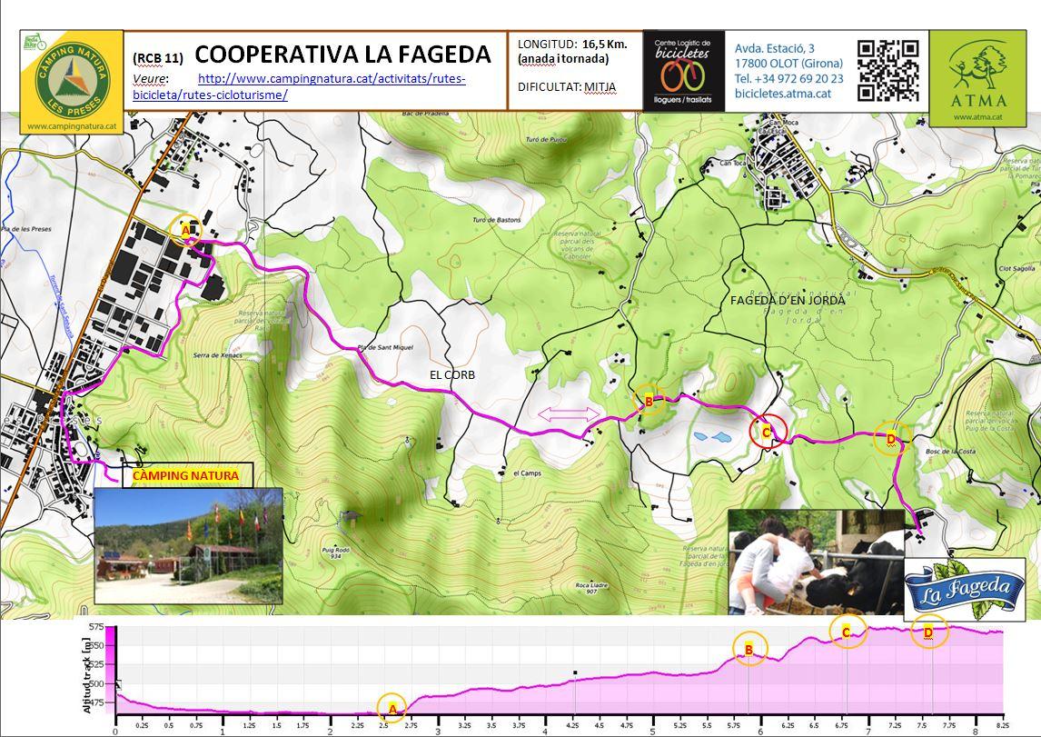 Captura-RCB-11-COOP-LA-FAGEDA-fitxa